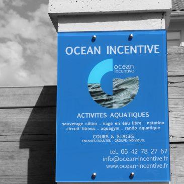 Local Ocean Incentive